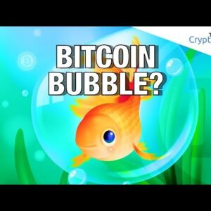 Bitcoin Bubble? 🤔 What The Hell Are Bubbles 🗨 Anyway? A Cryptocurrency Analysis (Cryptoverse)