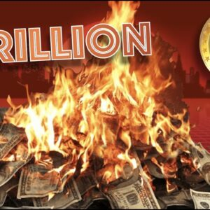 Corporations are Sitting On 5 TRILLION Dollars That is ON FIRE. Bitcoin is the Answer. Here's WHY...