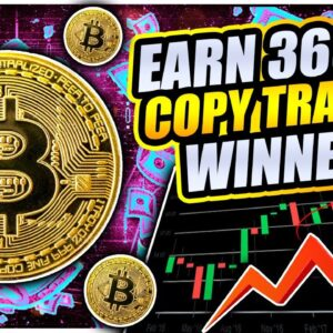 366% PROFIT COPYING TOP TRADERS!!! PrimeXBT Covesting Review