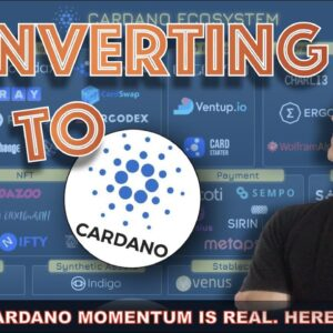 CARDANO CONVERTER & ECOSYSTEM WILL BE MASSIVE. HERE'S WHEN...
