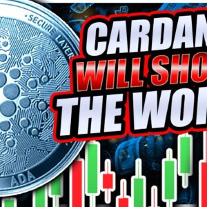 CARDANO ONCE IN A LIFETIME BUY OPPORTUNITY!!!? (Urgent)