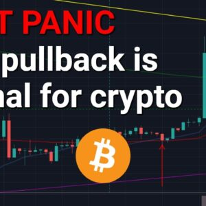 Crypto Pullback But Don't Panic (Perfectly Normal)