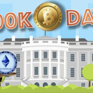 100 days to 100K BTC Depends on Super Tuesday Presidential Election. CARDANO Eats Ethereum's Lunch