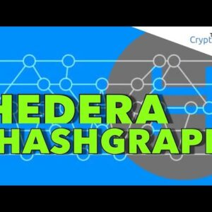 Hedera Hashgraph / Bitcoin at $8100 / Flying back to the UK ✈️