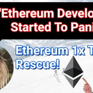 """Ethereum Developers Started To Panic"" - Afri Schoedon"