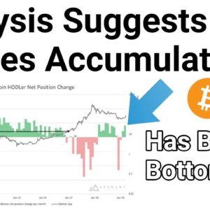 Has Bitcoin Bottomed? Analysis Suggests Whales Accumulating