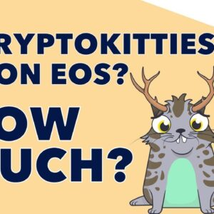 How Much Would It REALLY Cost To Run CryptoKitties on EOS? 🐱