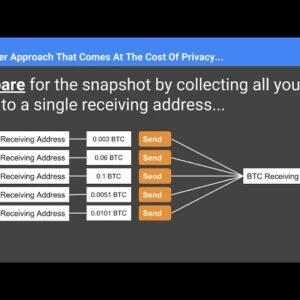 How To Prepare For Hex Launch (Ledger Nano S Version)