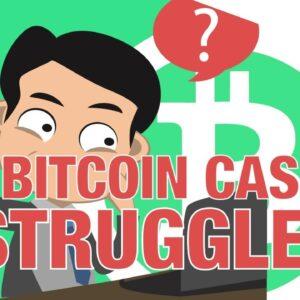 Bitcoin Cash 🤔 Struggling? Hard Fork Network Split Post Mortem 💀 Segwit Update (The Cryptoverse)