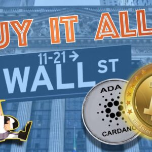 Does BIG MONEY Know Something YOU DON'T? Bitcoin MASSIVELY BOUGHT! Cardano MainNet Launch Delay?