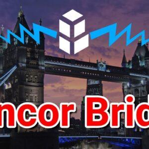New Bull Run / EOS Not A Blockchain / Government Theft Plan