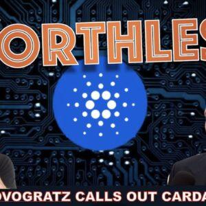 NOVOGRATZ: CARDANO SHOCKS ME OF IT'S VALUATION. (W/ @Mike Tha Investor