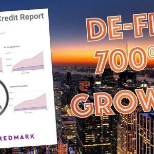 REPORT: De-Fi EXPLOSIVE GROWTH of 700% as a SMALL BUSINESS REVENUE CATALYST. America's CBDC Problem.