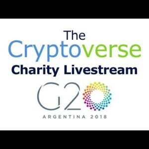 G20 Press Conference / Charity Livestream In Aid Of Ana Olesky's Cancer Treatment
