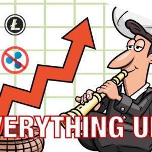 Everything Is Up (except Ripple) / IOTA +31% / VERI +28% / ETH +10% / BTC Chart Reading (17 July 17)