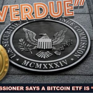 """SEC COMMISSIONER: """"BITCOIN ETF IS OVERDUE"""". APPROVAL THIS YEAR?"""
