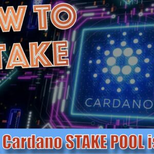 STAKING CARDANO for PASSIVE INCOME. Reward Yield, What's an EPOCH, How To Join the DAN STAKE POOL.