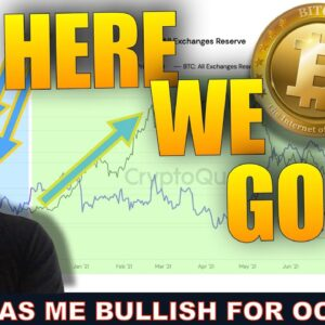 THE CRYPTO MARKET WILL GO BIG IN OCT / NOV & HERE'S WHY…