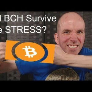 Will Bitcoin Cash Survive The September Stress Test?
